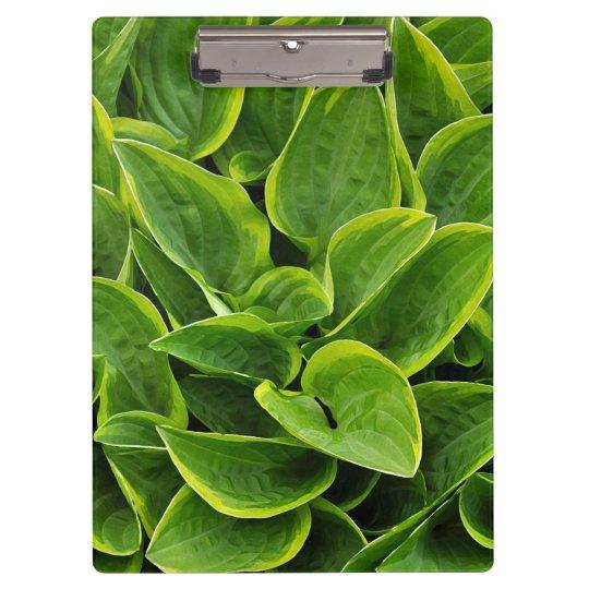 Green hosta leaves print clipboards