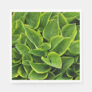 Green hosta plant leaves paper napkin
