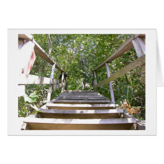 Green House Steps Card