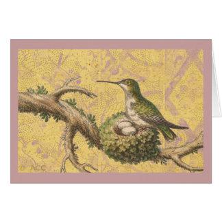 Green Hummingbird Nest Eggs Branch Card