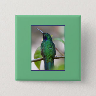 Green Hummingbird Square Button