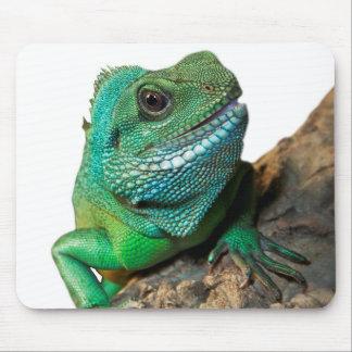 Green iguana mouse pad