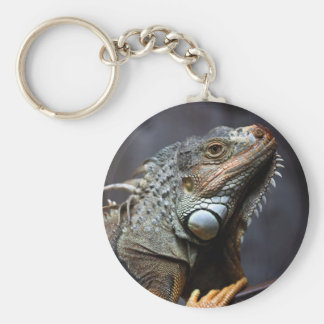 Green iguana portrait keychain