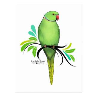 Green Indian Ringneck Parrot Postcard