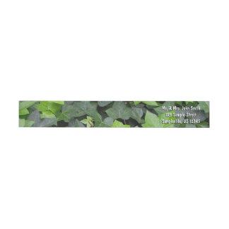 Green Ivy Wrap Around Label
