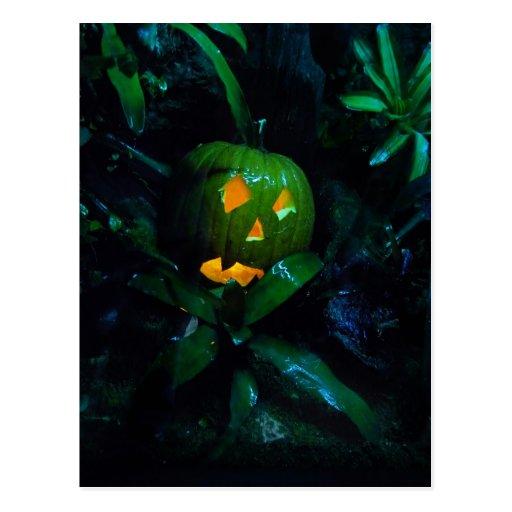 Green Jack O Lantern Post Card