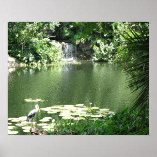 Green Lagoon Poster