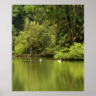 Green Lake Poster