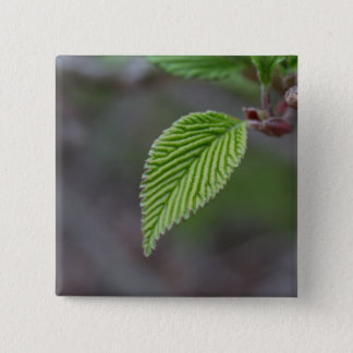 Green Leaf 2 Inch Square Button