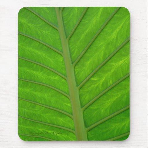 Green Leaf 2 Mousepad Mousepad