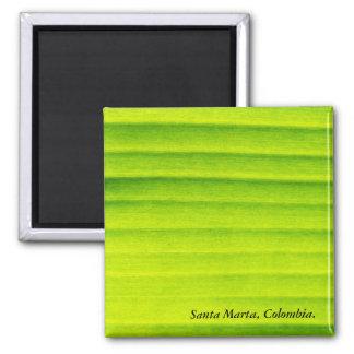 Green Leaf Background Square Magnet