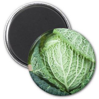 Green Leaf Cabbage 2 Inch Round Magnet