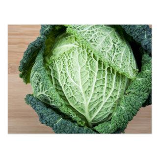 Green Leaf Cabbage Postcard
