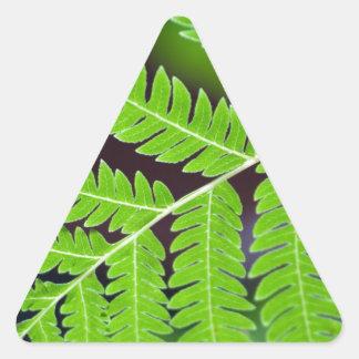 Green Leaf Closeup Sticker