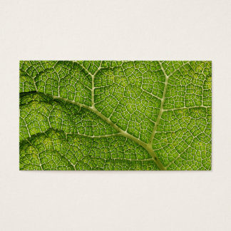 Green Leaf. Digital Art. Business Card