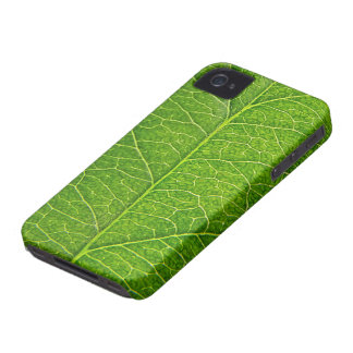green leaf iPhone 4 cases
