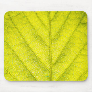 Green Leaf Macro Mouse Pad