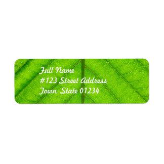 Green Leaf Mailing Label