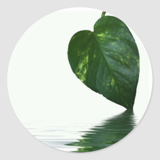 Green Leaf reflection on water theme Classic Round Sticker