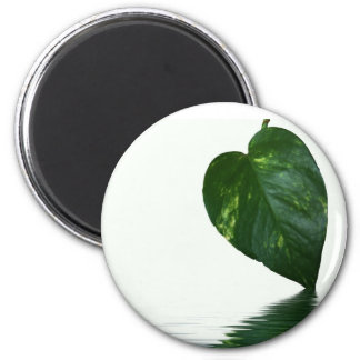 Green Leaf reflection on water theme Fridge Magnet