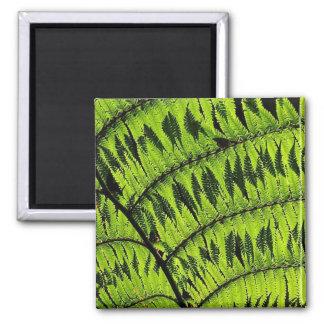 Green Leaf Square Magnet