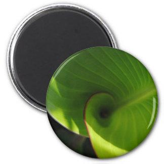 Green Leaf Swirl Refrigerator Magnet