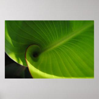 Green Leaf Swirl Poster
