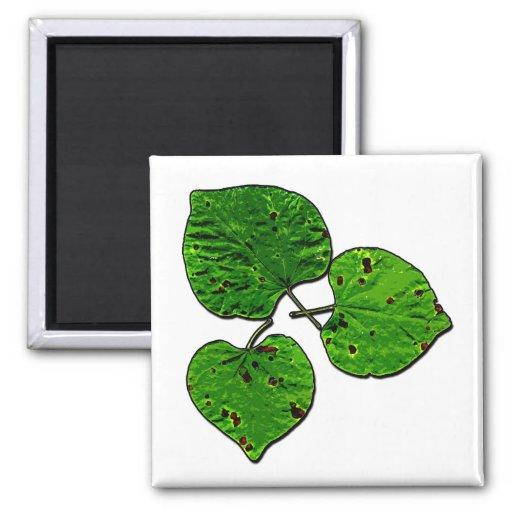 Green Leaf Trio Magnet