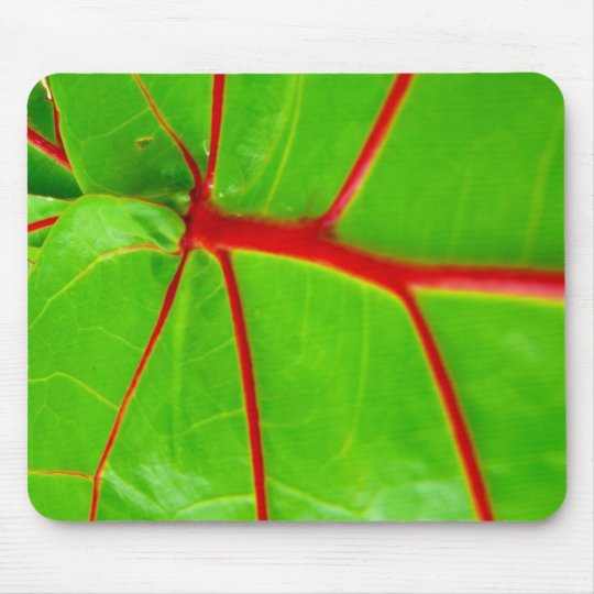 Green Leaf with Red Veins Mouse Pad