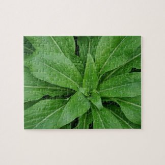 Green Leafs Jigsaw Puzzle