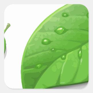 Green Leafs Square Sticker