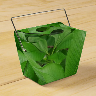 Green Leafs Take Out Favor Box