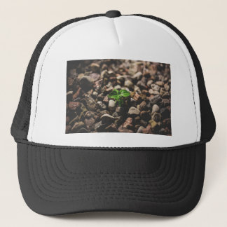 Green Leafy Plant Starting to Grow on Beige Racks Trucker Hat