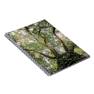 green leaves all around spiral notebook