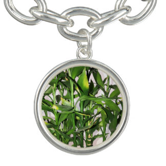 Green leaves and bamboo shoots house plant bracelets