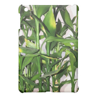 Green leaves and bamboo shoots house plant iPad mini cases