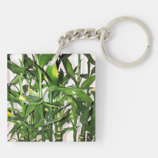 Green leaves and bamboo shoots house plant keychain