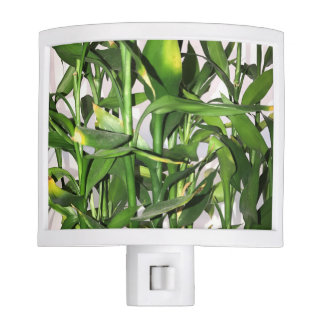 Green leaves and bamboo shoots house plant night lights
