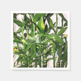 Green leaves and bamboo shoots house plant paper napkin