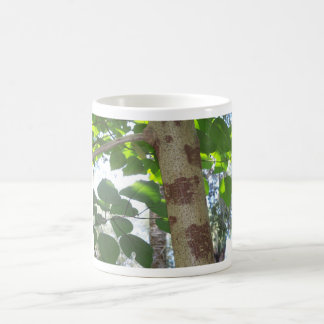 green leaves and tree trunk with cool bark coffee mug