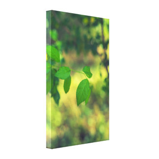 Green leaves and yellow bokeh canvas print