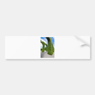 Green leaves arches bumper sticker