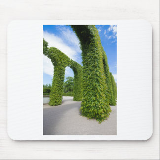 Green leaves arches mouse pad