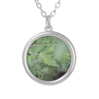 Green leaves closeup photography silver plated necklace