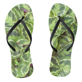 Green leaves flip flops