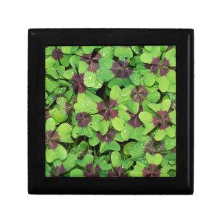 Green Leaves Gift Box