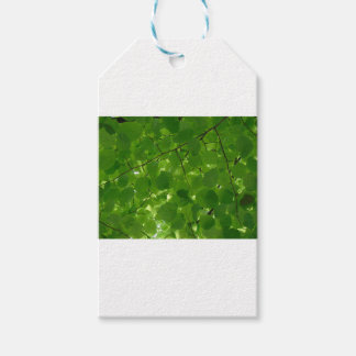 Green Leaves Gift Tags
