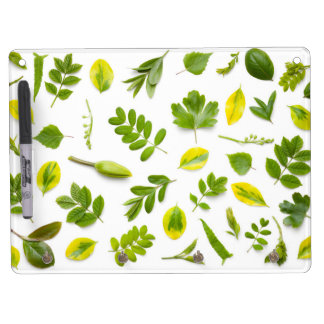 Green Leaves Isolated on White Background Dry Erase Board With Keychain Holder