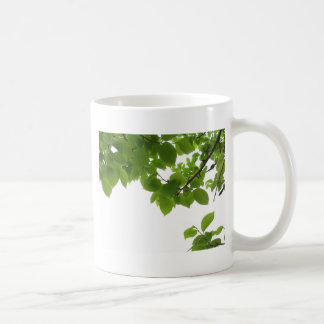 Green leaves of persimmon tree on white background coffee mug