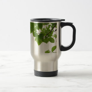 Green leaves of persimmon tree on white background travel mug